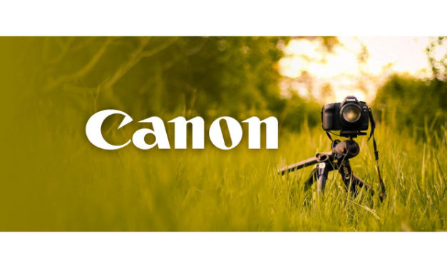 Canon South Africa is doing wonders for carbon reductions and water saving